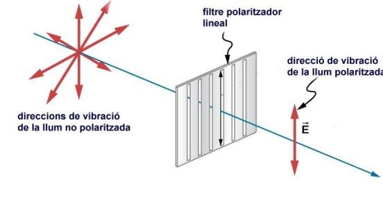 llum polaritzada